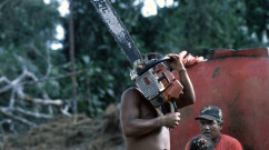 19-nicaragua-chainsaw