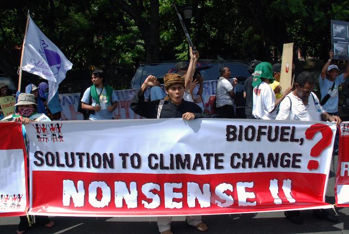 27*10 IDA_biofuels_LANGELLE copy