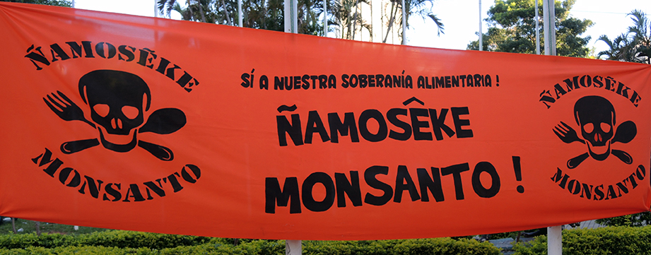 Ñamoseke Monsanto is an Urban Farmers Organization that helps coordinate the movement against Monsanto. PhotoLangelle