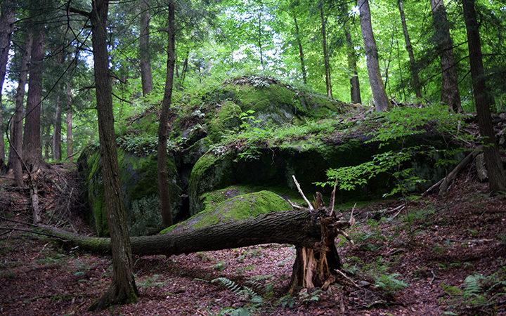 Somewhere in the Adirondack Mountains, NY. Photo: Langelle